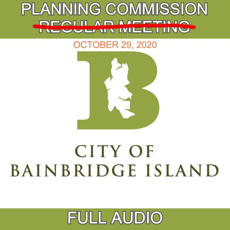 PLANNING COMMISSION SPECIAL MEETING THURSDAY, OCTOBER 29, 2020